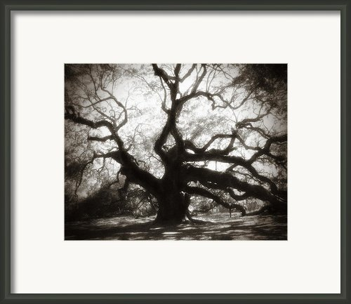 Her Magesty Framed Print By Amy Tyler