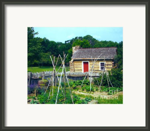 Herb And Vegetable Garden Framed Print By Penny Neimiller