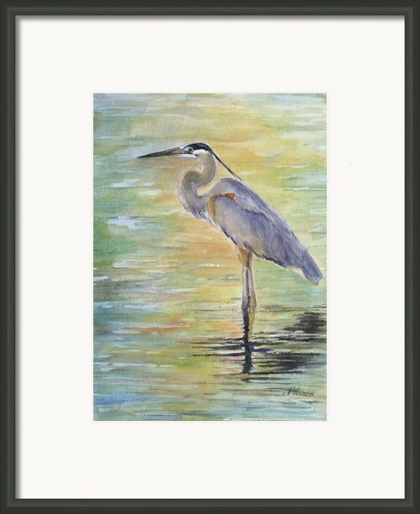 Heron At The Lagoon Framed Print By Patricia Pushaw