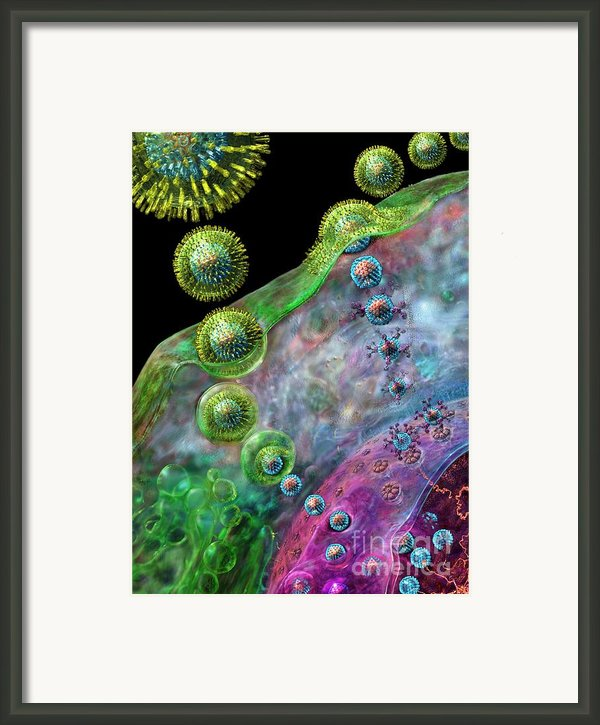 Herpes Virus Replication Framed Print By Russell Kightley