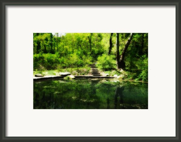 Hidden Pond At Schuylkill Valley Nature Center Framed Print By Bill Cannon