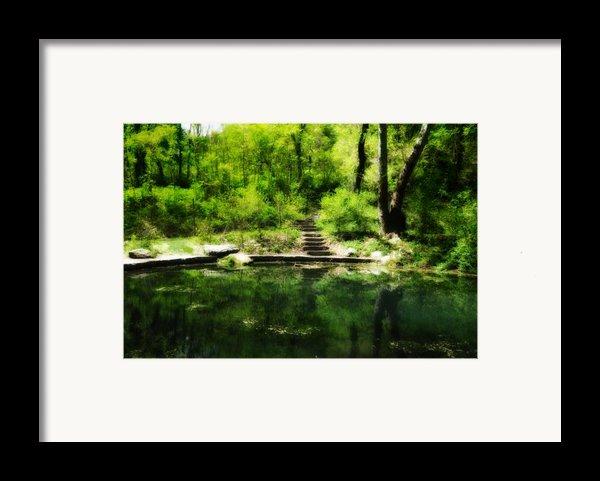 Hidden Pond At Schuylkill Valley Nature Center Framed Print By Bill Cannon