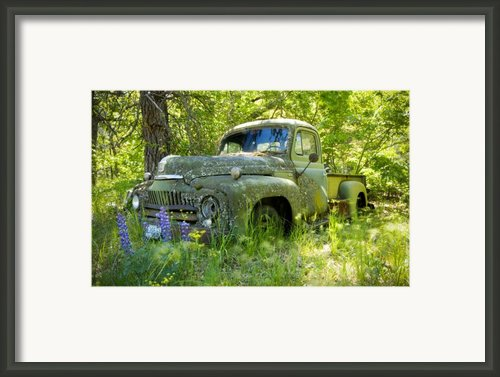 Hiding Framed Print By Idaho Scenic Images Linda Lantzy