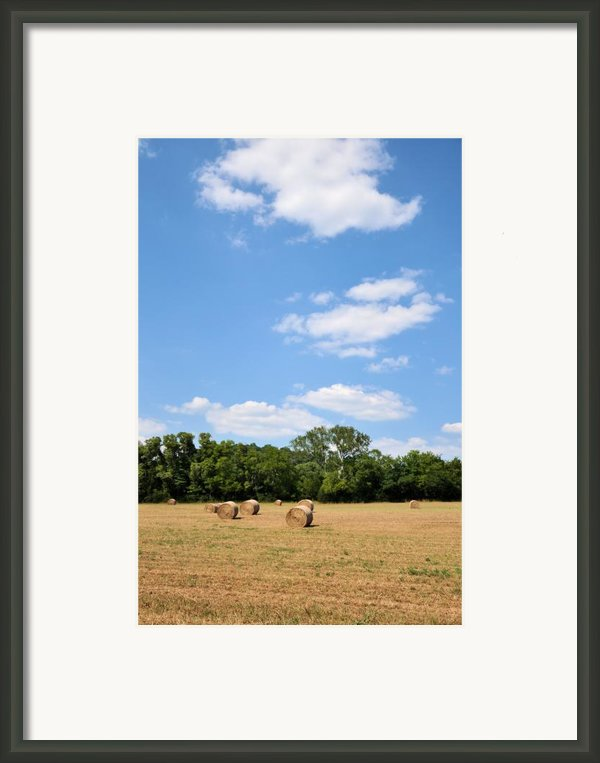 High As The Sky Framed Print By Jan Amiss Photography