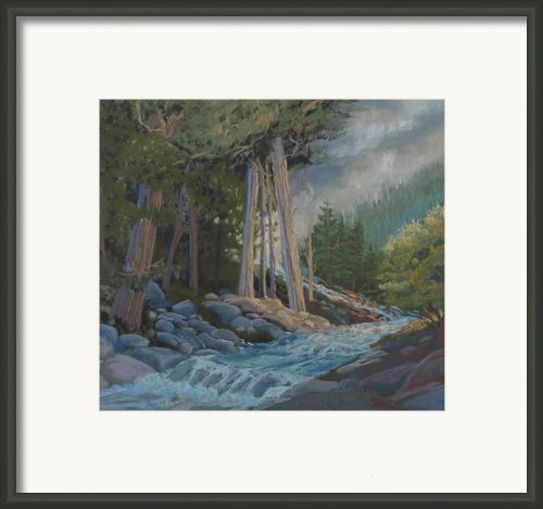 High Country Colorado Framed Print By Heather Coen