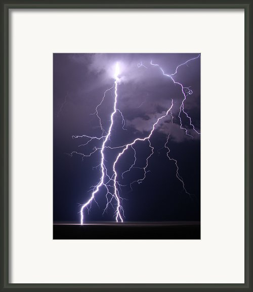High Voltage! Framed Print By Pat Gaines