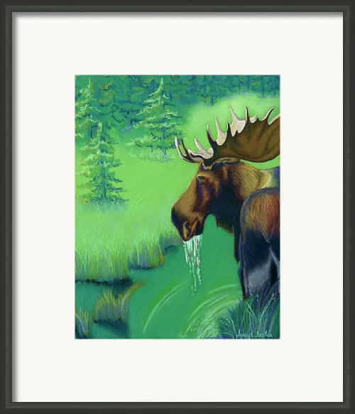 Highlands Framed Print By Tracy L Teeter