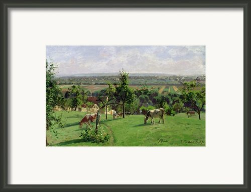 Hillside Of Vesinet Framed Print By Camille Pissarro