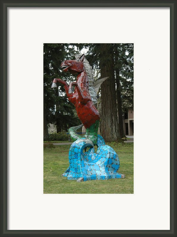 Hippocampus Framed Print By Ben Dye