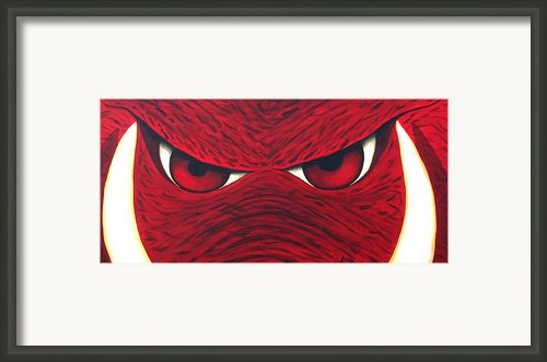 Hog Eyes 2 Framed Print By Amy Parker