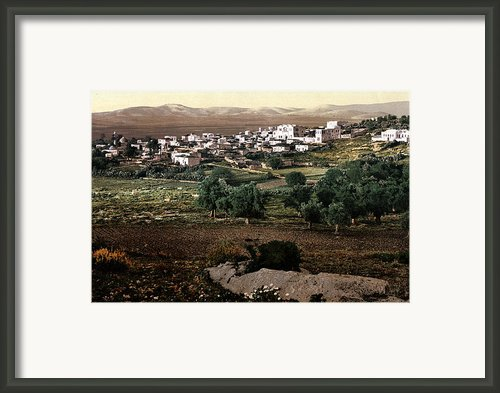 Holy Land - Jenin Framed Print By Munir Alawi