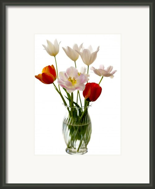 Home Grown Framed Print By Marilyn Hunt
