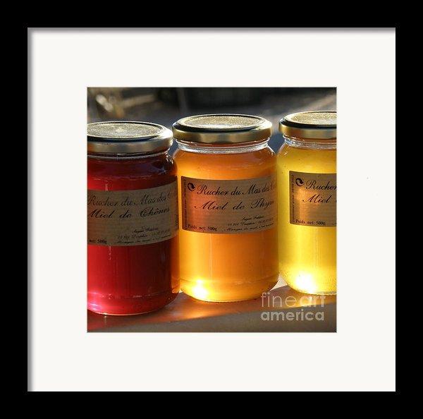 Honey Framed Print By Lainie Wrightson