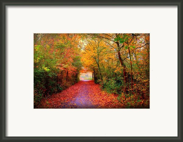 Hope Framed Print By Photodream Art