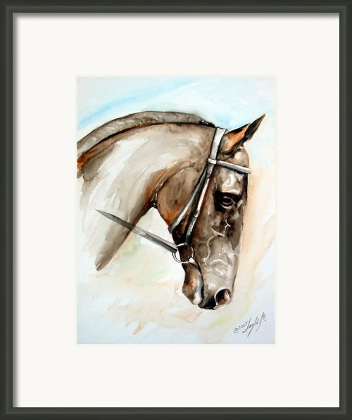 Horse Head Framed Print By Leyla Munteanu