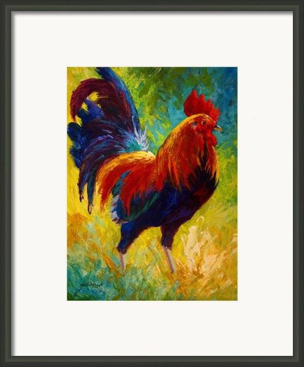 Hot Shot - Rooster Framed Print By Marion Rose