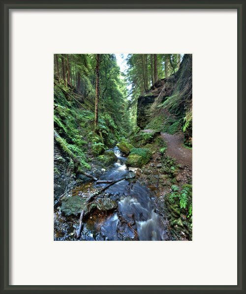 How Green Is My Glen Framed Print By Gary Eason