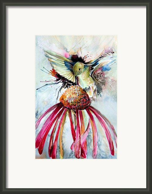 Humming Bird Framed Print By Mindy Newman