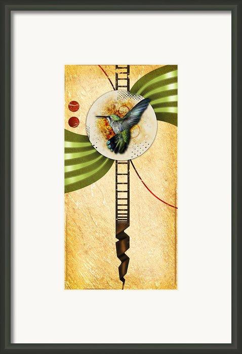 Humming Framed Print By Joshua Dixon