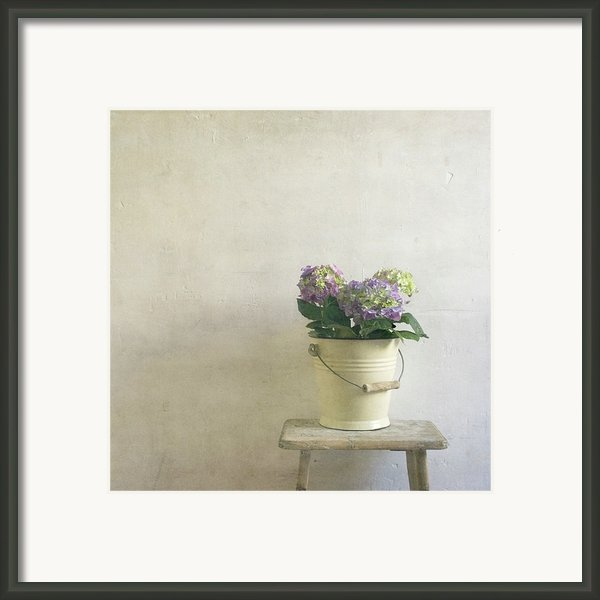 Hydrangea Resting On Stool Framed Print By Paul Grand Image
