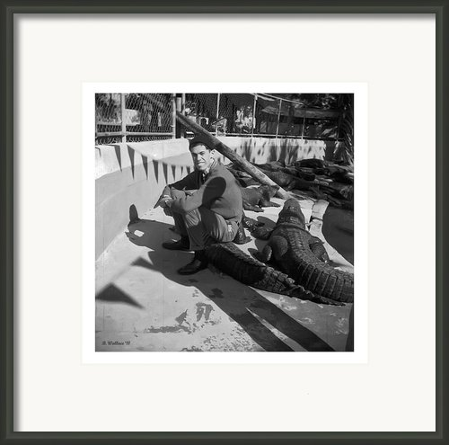 I Need Some Gator Aid Framed Print By Brian Wallace