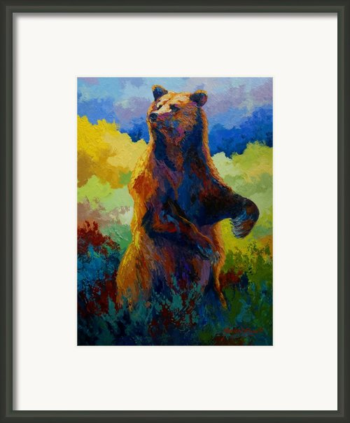 I Spy - Grizzly Bear Framed Print By Marion Rose
