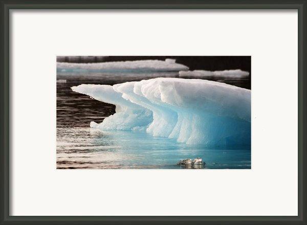 Ice Bears Framed Print By Elisabeth Van Eyken