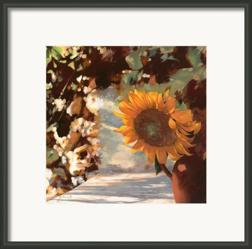 Il Girasole Framed Print By Guido Borelli