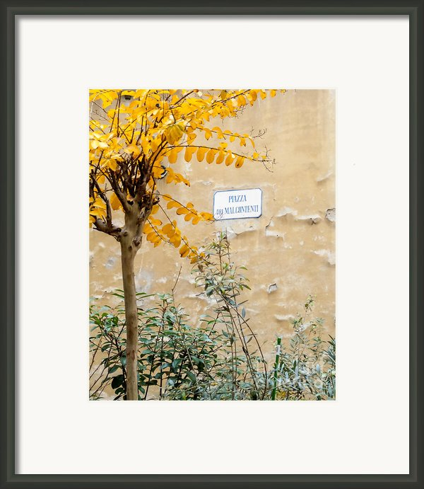 Il Piazza Malcontenti Framed Print By Michael Flood