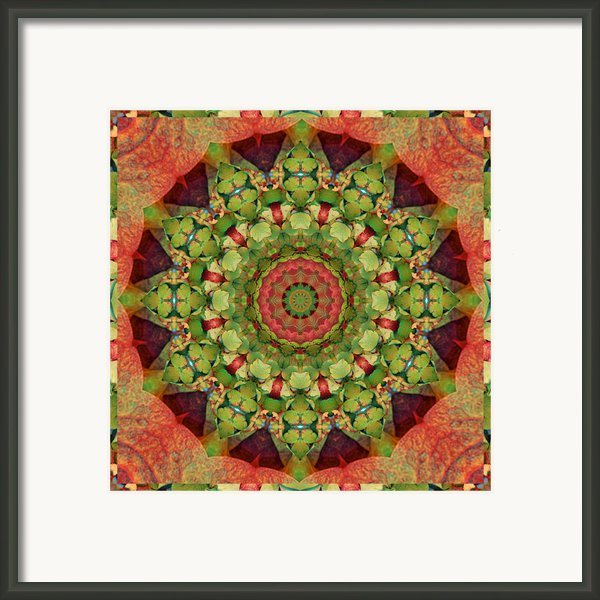Illumination Framed Print By Bell And Todd