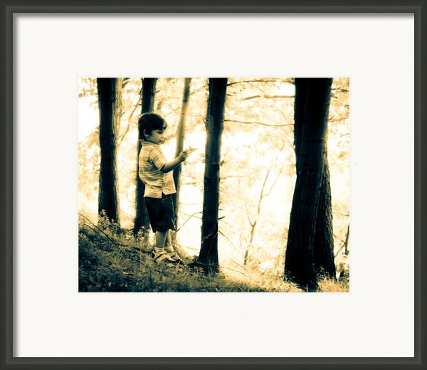 Imagination And Adventure Framed Print By Bob Orsillo