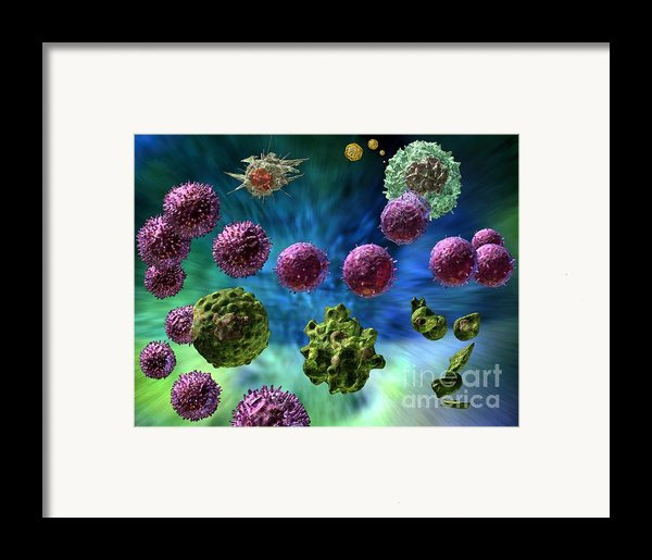 Immune Response Cytotoxic 1 Framed Print By Russell Kightley