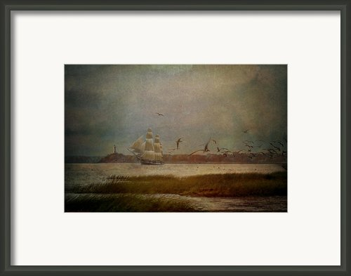 In Another Lifetime Framed Print By Lianne Schneider
