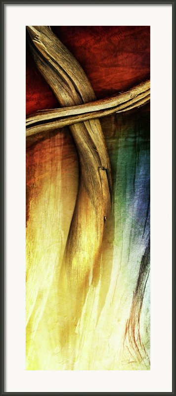 In Light Of The Cross Framed Print By Shevon Johnson
