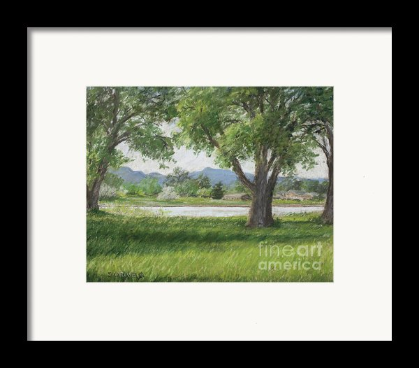 In Passing Framed Print By Susan Driver