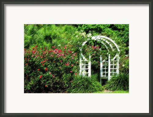 In The Garden Framed Print By Carolyn Marshall