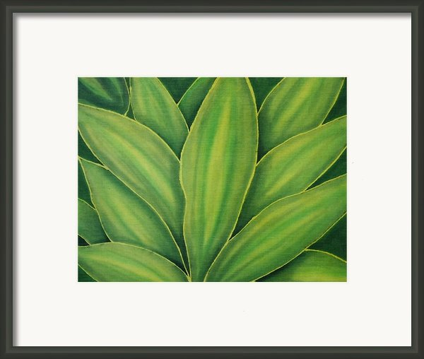 In The Garden Framed Print By Kim Jacobi