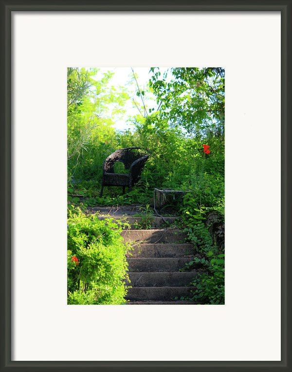 In The Garden Framed Print By Teresa Mucha