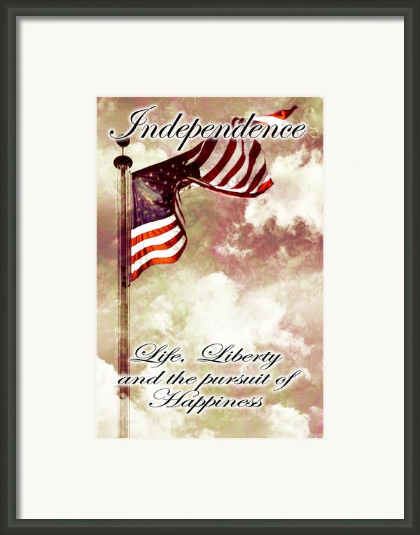 Independence Day Usa Framed Print By Phill Petrovic