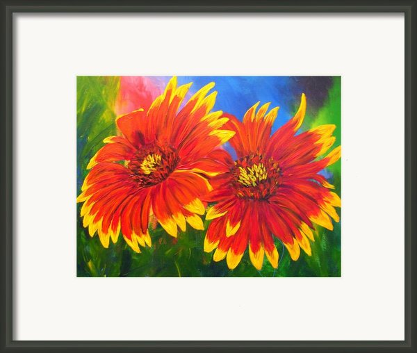 Indian Blanket Flowers Framed Print By Mary Jo  Zorad