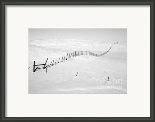 Infinity Framed Print By Julie Lueders