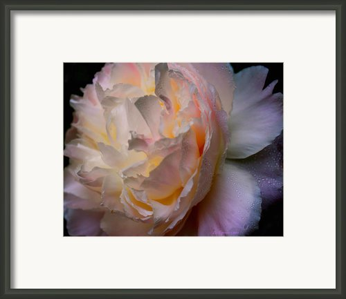 Inner Beauty Framed Print By Liz Evensen