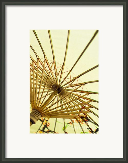 Inside Of Parasol Framed Print By Sam Bloomberg-rissman