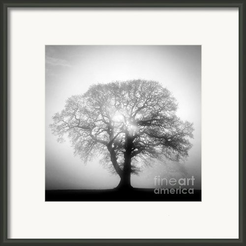 Into The Light Framed Print By John Potter
