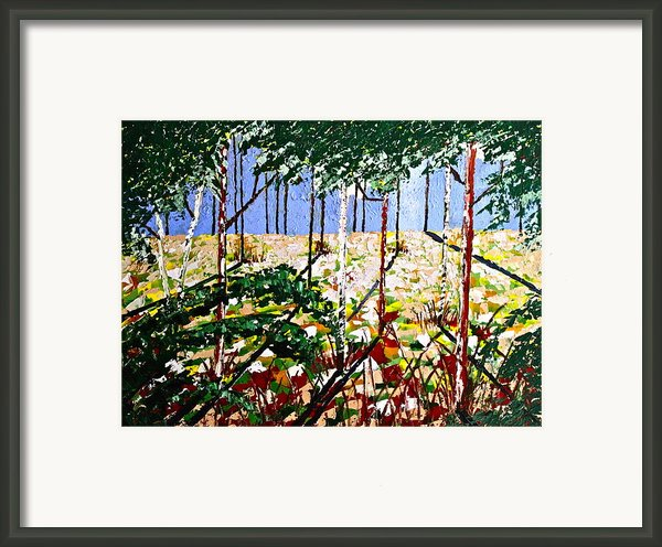 Into The Wood Framed Print By Eric Chapman