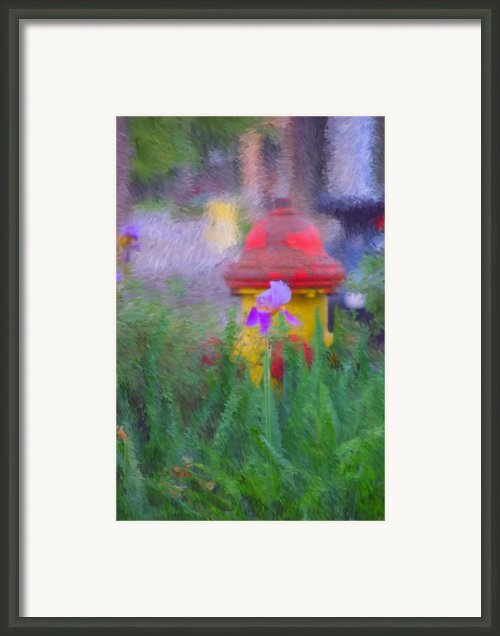 Iris And Fire Plug Framed Print By David Lane