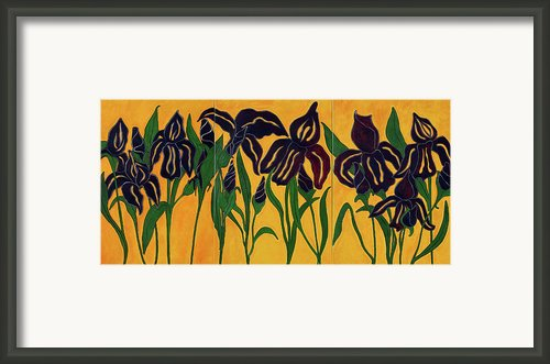 Irises Framed Print By Enzie Shahmiri