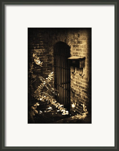 Iron Door Sepia Framed Print By Kelly Hazel