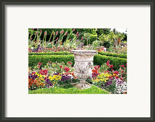 Italian Urn Royal Roads Framed Print By David Lloyd Glover