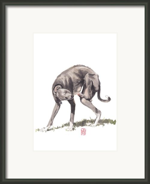 Itchy Italian Framed Print By Debra Jones